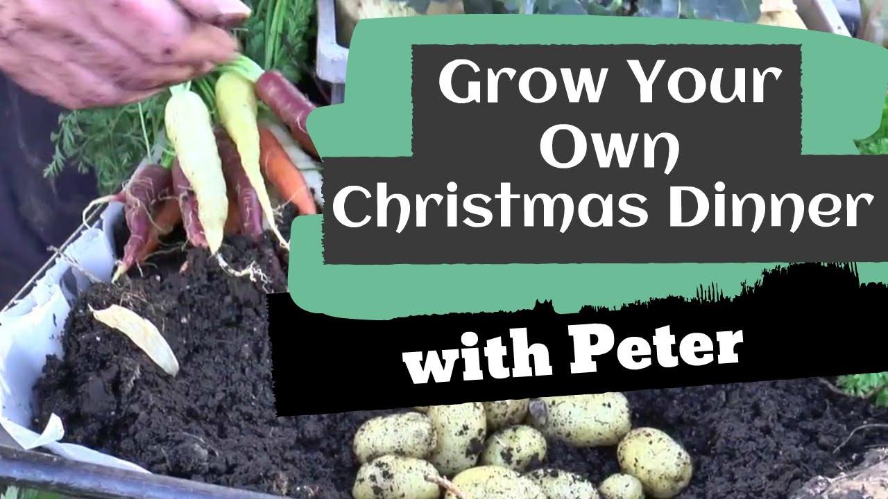 Grow Your Own Christmas Dinner