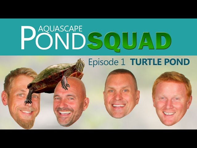 Aquascape Pond Squad - Turtle Pond - Episode 1