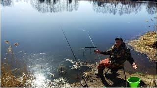 Ловля рыбы на опарыша в апреле 2020