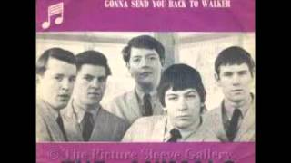 THE ANIMALS (U.K) - Gonna Send  You Back To Walker