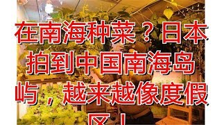 在南海种菜?日本拍到中国南海岛屿,越来越像度假区!