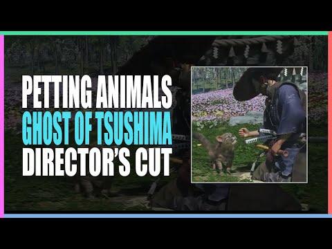 撸好撸滿! 《對馬戰鬼導演版》新增貓咪、鹿、猴子讓玩家拍打餵食