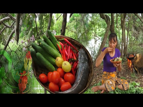 Cooking snakehead fish with tomato sauce recipe in forest-Eat delicious