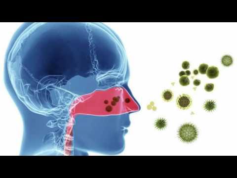 Le traitement du psoriasis la méthode ognevoj