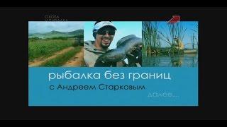 Рыбалка без границ змееголов