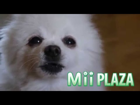 Gabe The Dog - Mii Channel (Plaza Theme)