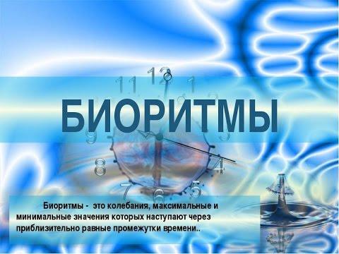 !!!Биоритмы Человека!!!|!!!Bioritmy Cheloveka!!!