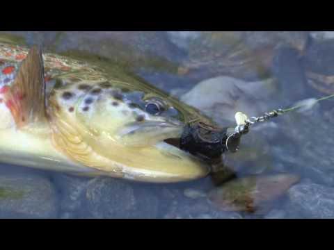 La pesca su un occhio una fossa