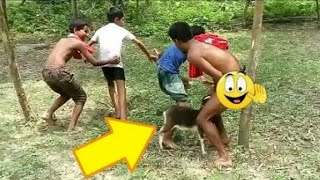 Very Funny whatsapp Comedy Video 😂@3@2019  Latest Vines Funny Video New Comedy Video #vipnfs