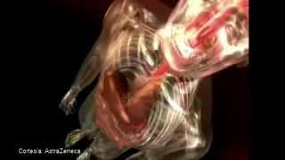 El Corazón Duele - Dra. Guadalupe Parra - Parte 1