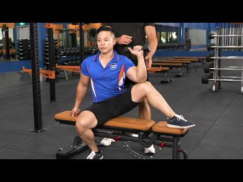 Seated Dumbbell External Rotation