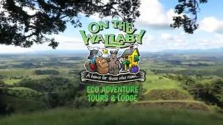 On The Wallaby Eco Lodge - Cairns Atherton Tablelands Yungaburra