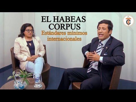 EL HABEAS CORPUS: Estándares mínimos internacionales - Tribuna Constitucional 106 - Guido Aguila