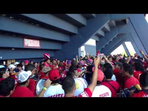 """La Murga del Tiburón en la previa VS Tigres"" Barra: Guardia Roja • Club: Tiburones Rojos de Veracruz"