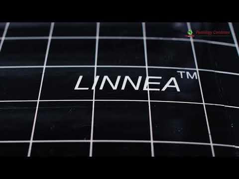 Linnea fly Catcher Model LFT115