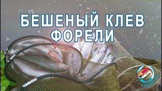Рыбалка в лагуне на нижнем пруду