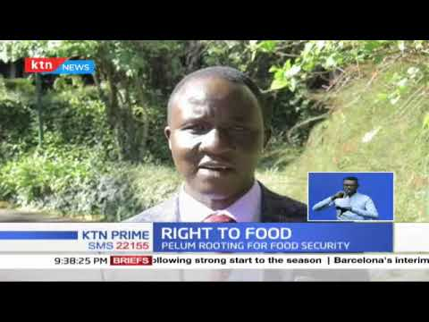 Right to Food: Three million Kenyans face hunger