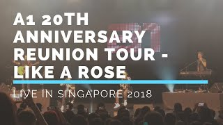 A1 20th Anniversary Reunion Tour Live In Singapore - Like A Rose