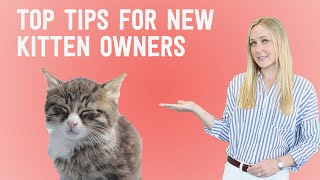 New Kitten? 10 things you NEED to know!