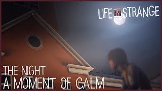 A Moment of Calm - The Night