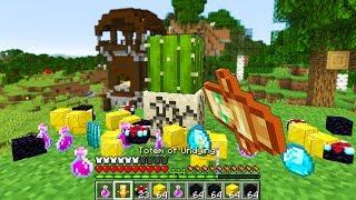 Minecraft UHC but every drop is RANDOM.. again again again..
