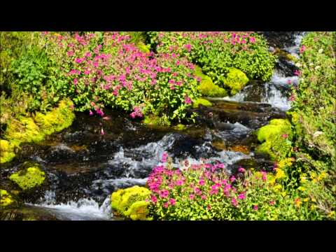 Relaxing Woodwind Music - Tranquil Water Sounds - Flute, Clarinet, Oboe, Bassoon, Guitar,