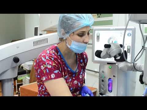 Metoda petelor pentru refacerea vederii