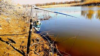 Рыбалка на карася и сазана весной КТО СКАЗАЛ ЧТО ТАК НЕЛЬЗЯ ЛОВИТЬ