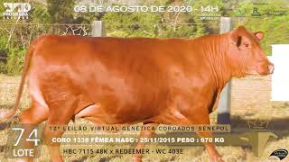 Coro 1338 b4 fiv