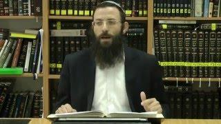 65 הלכות שבת או''ח סימן רעו סע' ג-ה הרב אריאל אלקובי שליט''א