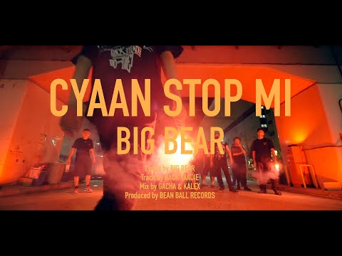 CYAAN STOP MI / BIG BEAR