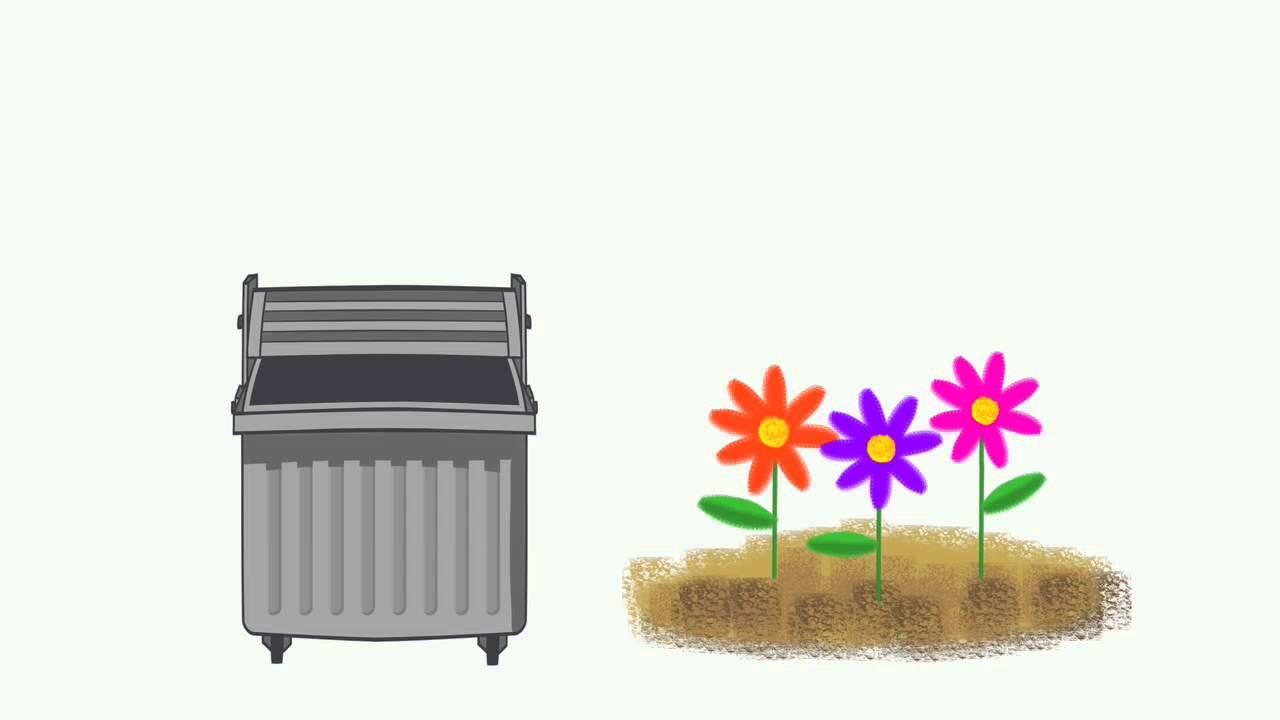 Cómo reciclar. Residuos orgánicos