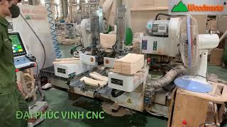 MÁY PHAY MỘNG 2 ĐẦU CNC FULL AUTO WOODMASTER