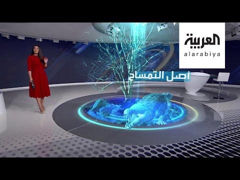 العرب اليوم - شاهد: جمجمة لتمساح عمرها 7 ملايين سنة تعيد أصله من أميركا إلى ليبيا