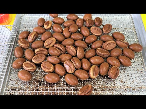 강릉에서 유명한 커피콩빵 #shorts - Coffee bean bread / Korean Street Food
