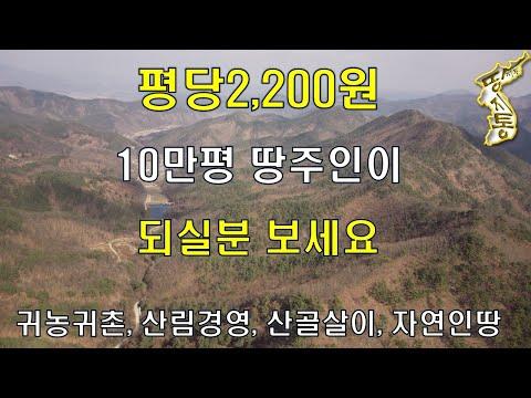 평당2200원.10만평 땅주인이 되실분 보세요.귀농귀촌,산림경영,산골살이,자연인땅[땅지통]