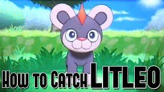 Pyroar  - (Pokémon) - How to Catch Litleo - Pokemon X and Y
