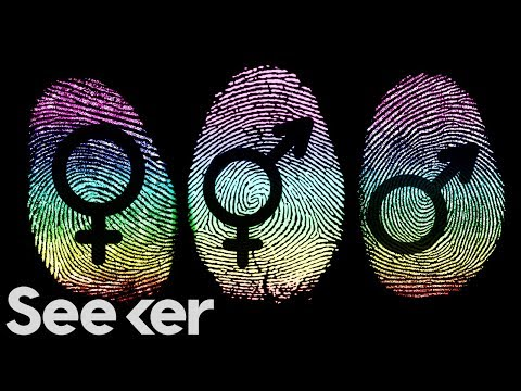 Seeker:  Here's What Gender Really Is, According to Science