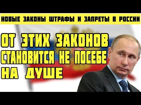 Новые законы в России с 1 февраля 2021 года