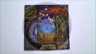 Dark Millennium - Disillution (Instrumental)