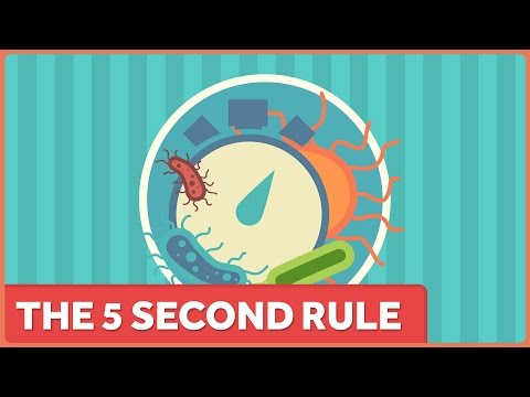 The Five Second Rule Only Works Because Your Kitchen Floor Is Relatively Clean