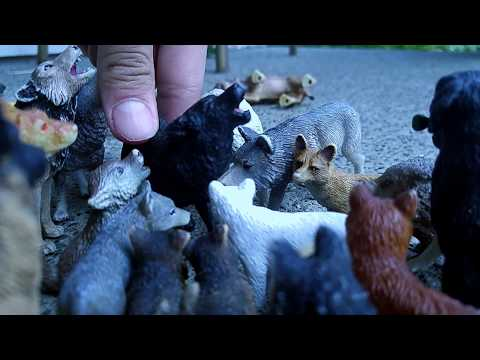 #Paws by Claws ep19 #kristina kashytska #lion #tiger #wolf  #schleich # ice wolf # wolf toys