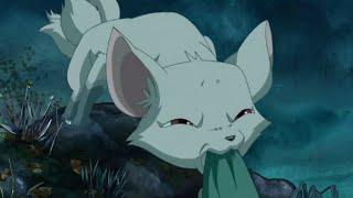 千年狐妖变成女孩来到人间,在爱上人类男子后,竟遭到对方的残忍背叛
