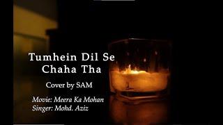 Tumhein Dil Se Chaha Tha Humne | Cover by Sam | Meera
