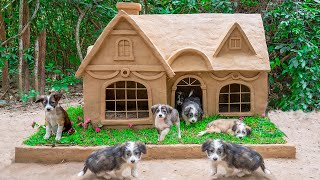 Build New House For Adopting Dog As Christmas Dog House