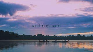 VELVET - MEDŽIAI MELAGIAI