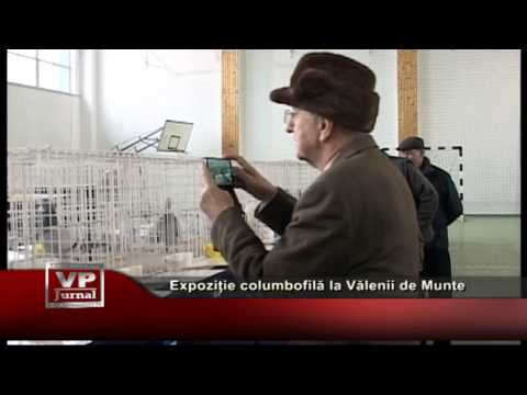 Expoziție columbofilă la Vălenii de Munte
