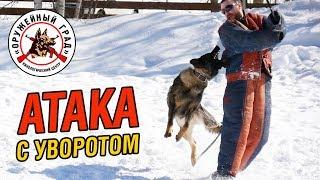 Атака с уворотом / Тренировка собак по защитно-караульной службе
