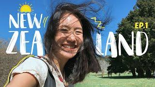 เรียนๆชิวๆที่นิวซีแลนด์~ | MayyR in New Zealand EP.1