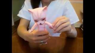 Box Opening: Pipos Cheshire (Cherry Blossom Skin)!